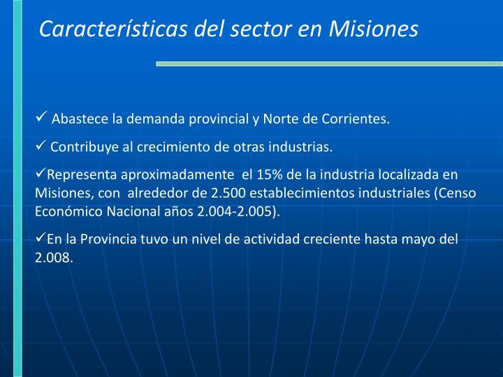 Características del sector en Misiones