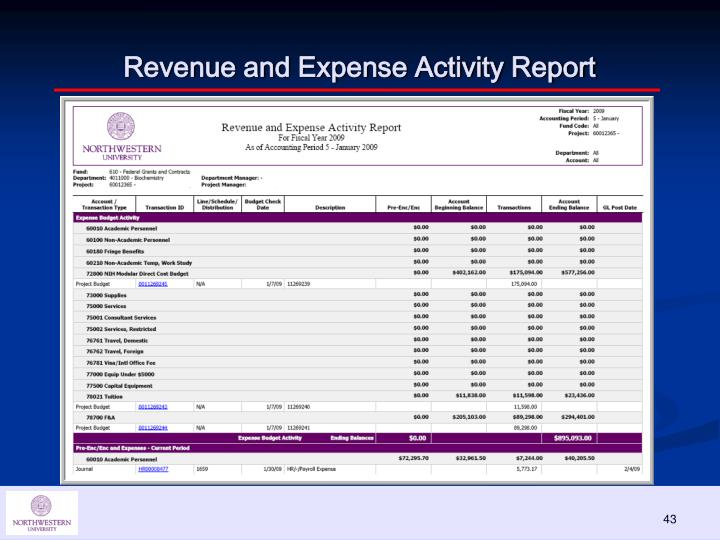 Revenue and Expense Activity Report