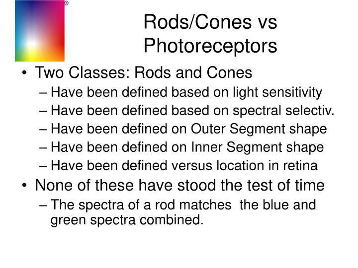Rods/Cones vs Photoreceptors