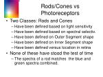 rods cones vs photoreceptors