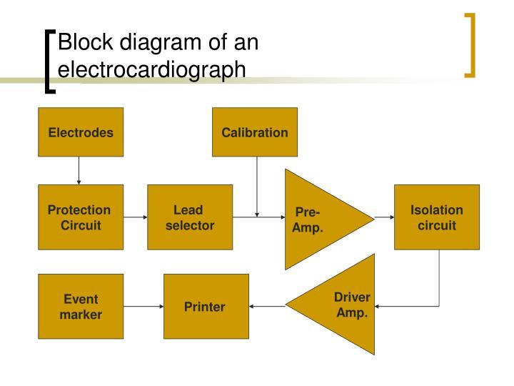 Block diagram of an electrocardiograph