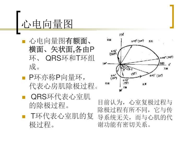心电向量图