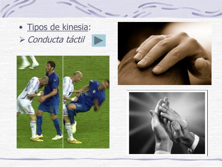 Tipos de kinesia