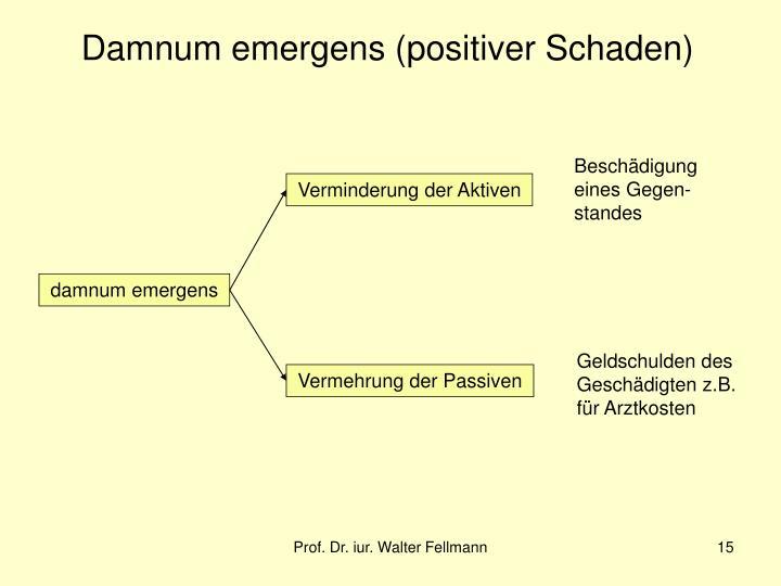 Damnum emergens (positiver Schaden)