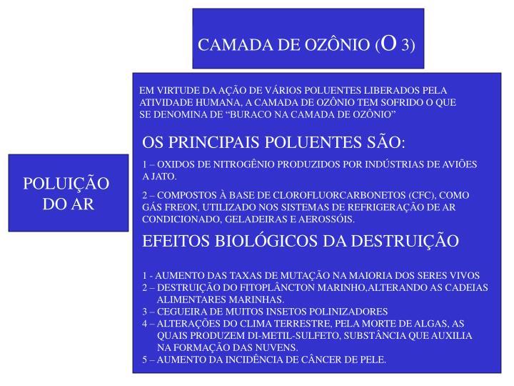 CAMADA DE OZÔNIO (