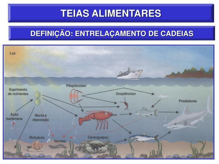TEIAS ALIMENTARES