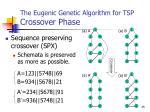 the eugenic genetic algorithm for tsp crossover phase