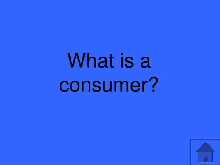 What is a consumer?
