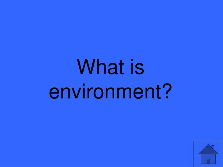 What is environment?