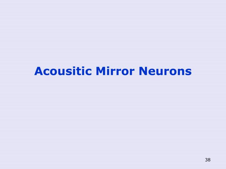 Acousitic Mirror Neurons