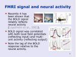 fmri signal and neural activity