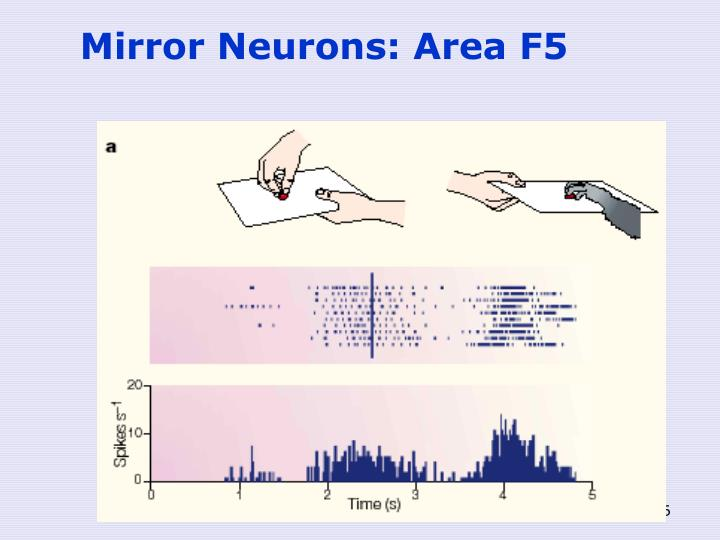 Mirror Neurons: Area F5
