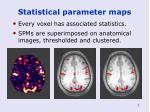 statistical parameter maps