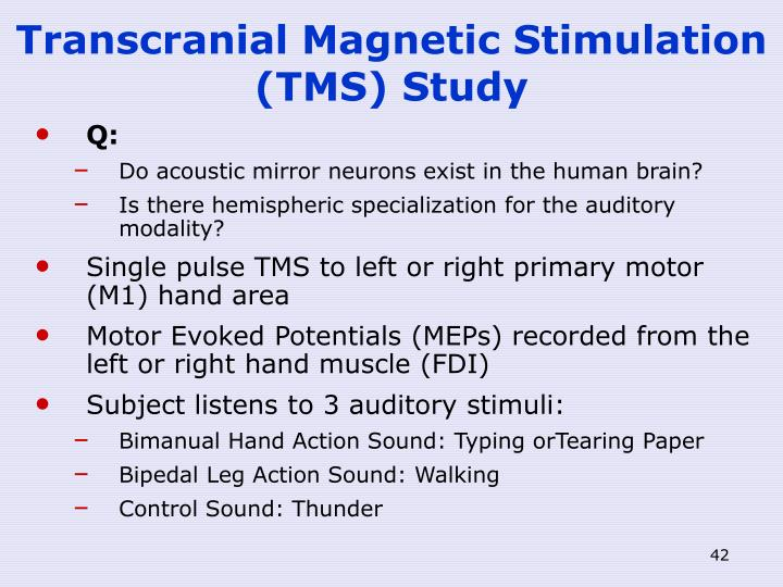 Transcranial Magnetic Stimulation (TMS) Study