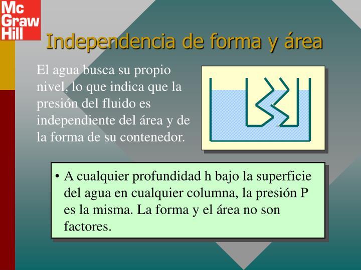 Independencia de forma y área