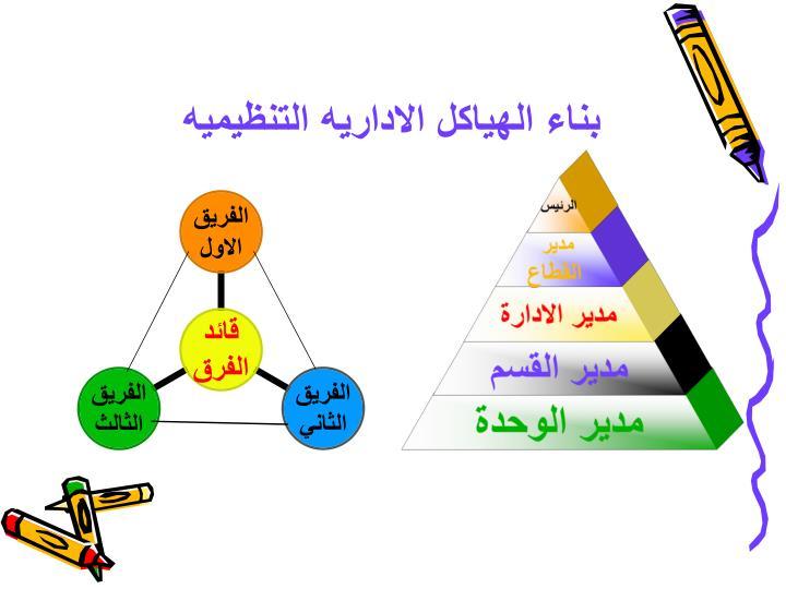 بناء الهياكل الاداريه التنظيميه