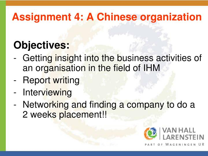 Assignment 4: A Chinese organization