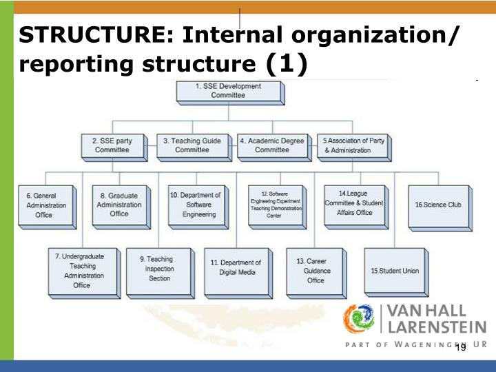 STRUCTURE: Internal organization/ reporting structure
