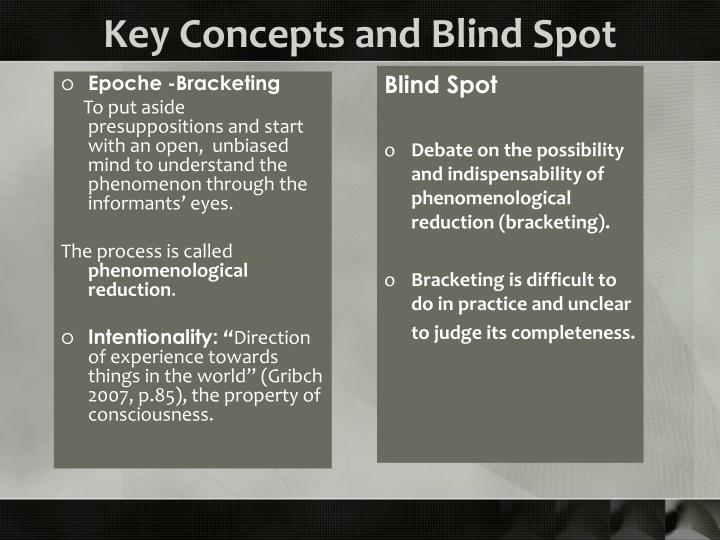 Key Concepts and Blind Spot