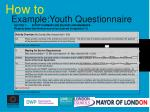 example youth questionnaire