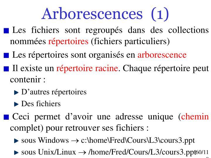 Arborescences  (1)
