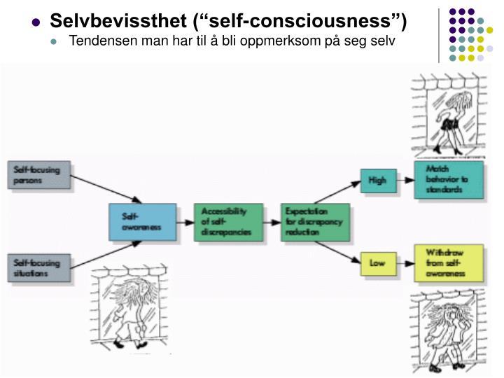 """Selvbevissthet (""""self-consciousness"""")"""