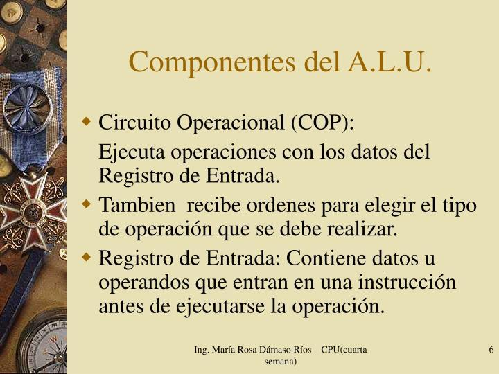 Componentes del A.L.U.