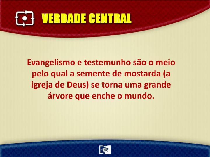 Evangelismo e testemunho são o meio pelo qual a semente de mostarda (a igreja de Deus) se torna uma grande árvore que enche o mundo.