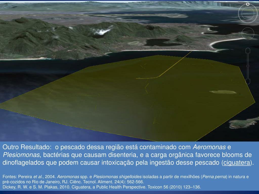 Outro Resultado:  o pescado dessa região está contaminado com