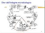 iter dell indagine microbiologica