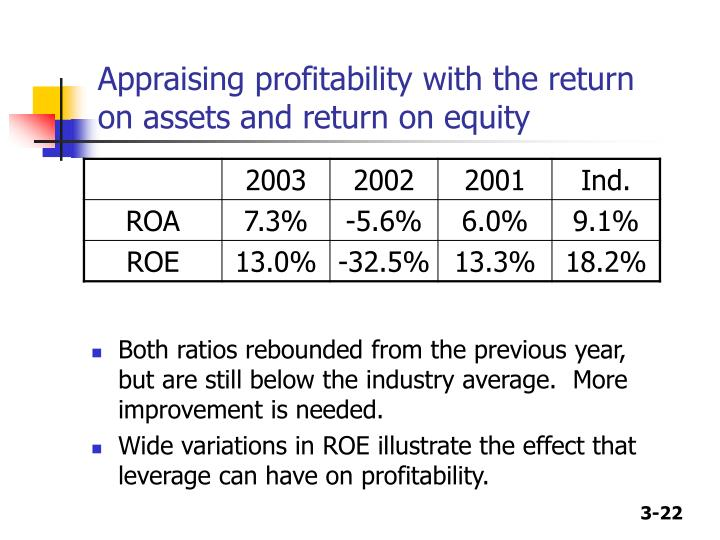 Appraising profitability with the return on assets and return on equity