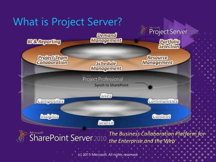 What is Project Server?