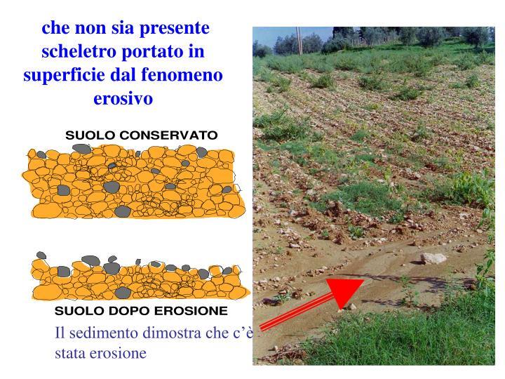 che non sia presente scheletro portato in superficie dal fenomeno erosivo