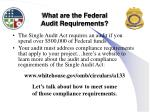 what are the federal audit requirements