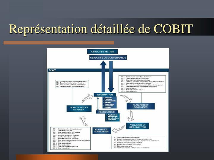 Représentation détaillée de COBIT