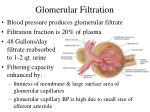 glomerular filtration
