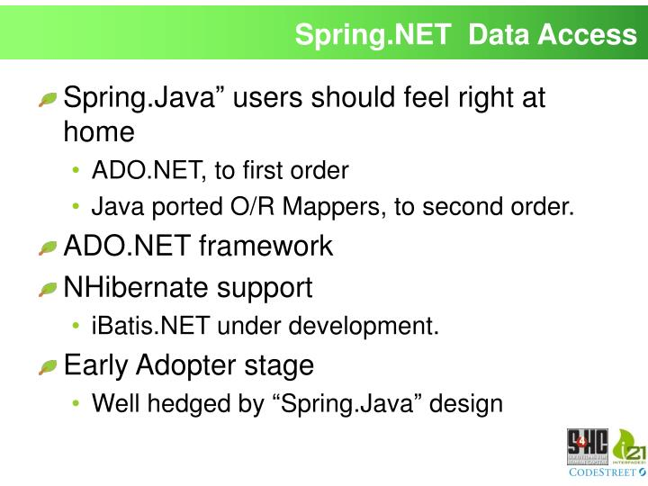 Spring.NET  Data Access