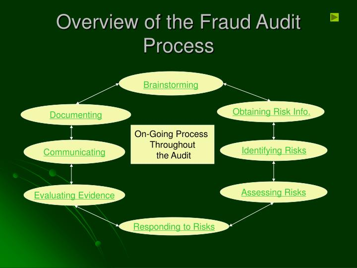 Overview of the Fraud Audit Process