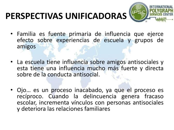 PERSPECTIVAS UNIFICADORAS