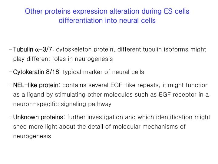 Other proteins expression alteration during ES cells differentiation into neural cells