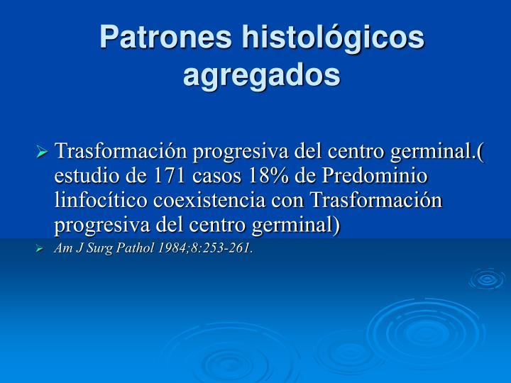Patrones histológicos agregados