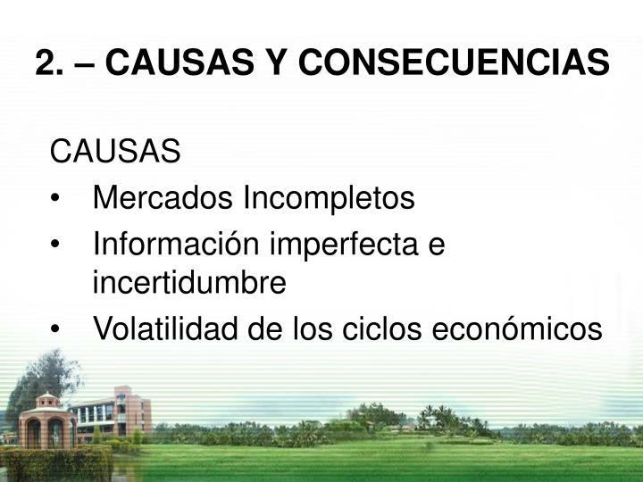 2. – CAUSAS Y CONSECUENCIAS