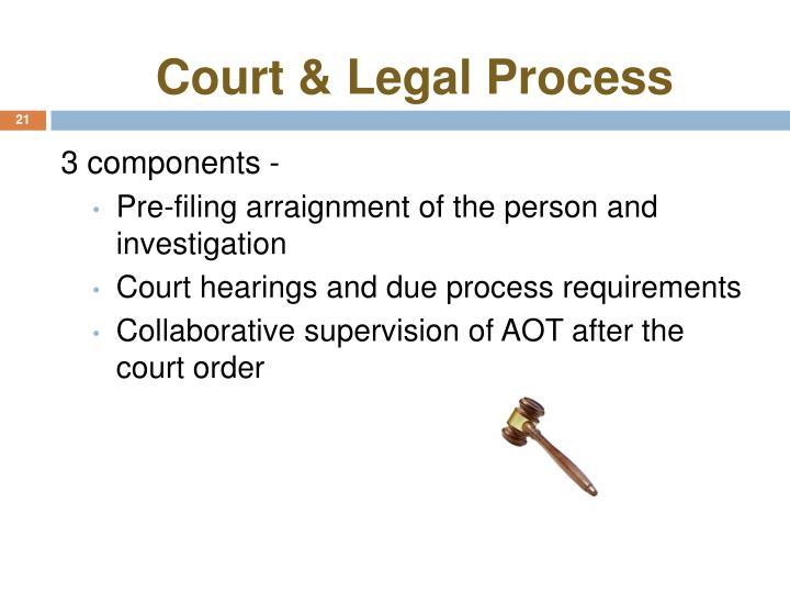 Court & Legal Process
