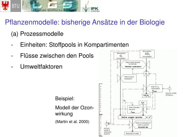 Pflanzenmodelle: bisherige Ansätze in der Biologie