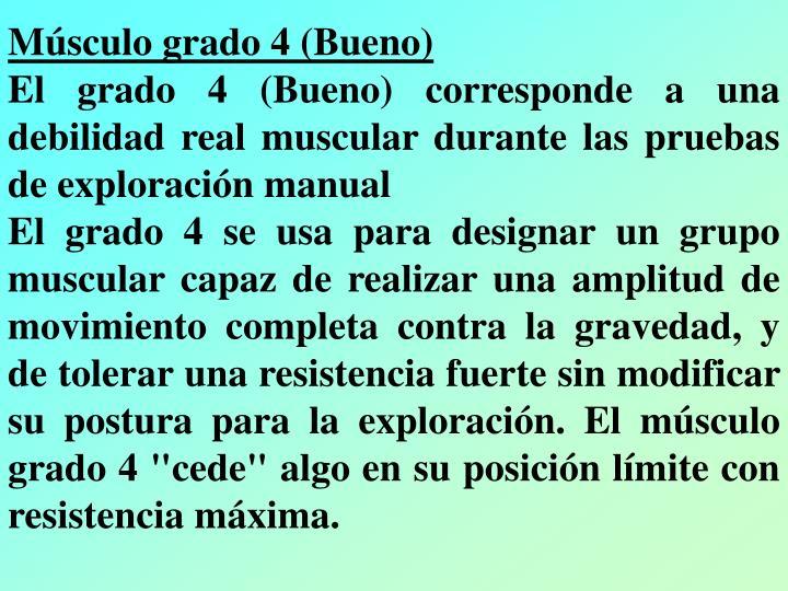 Músculo grado 4 (Bueno)