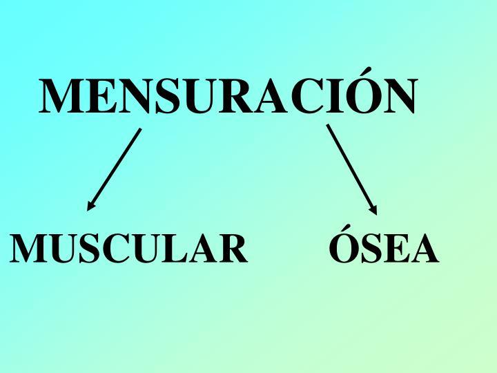 MENSURACIÓN