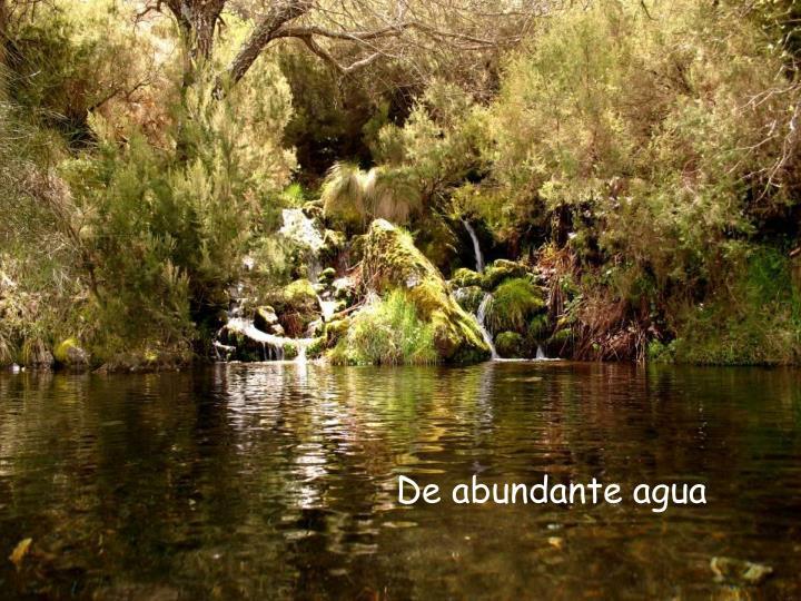 De abundante agua