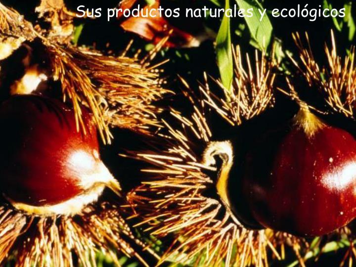 Sus productos naturales y ecológicos