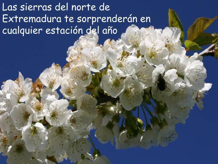 Las sierras del norte de Extremadura te sorprenderán en cualquier estación del año