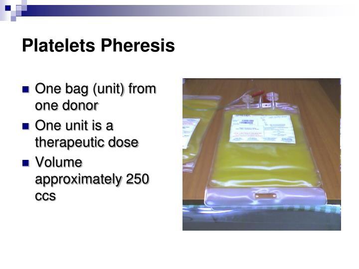 Platelets Pheresis
